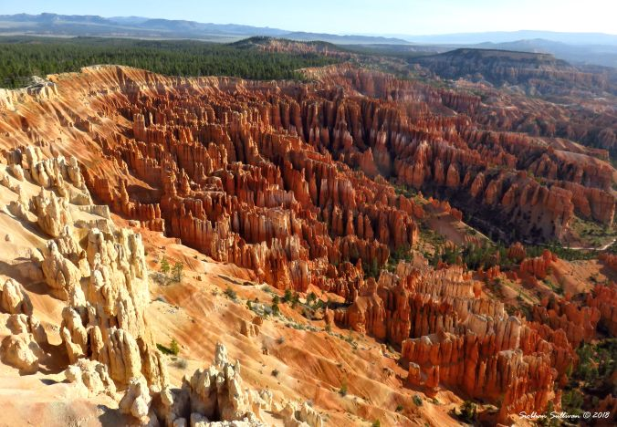 National Park Travels - Bryce Canyon 6May2017