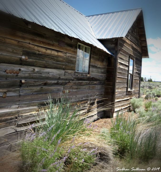 A Home on the Range Fort Rock, Oregon 9June2016
