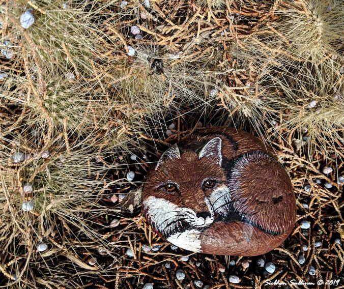 My Pocket Fox, rock painting 20February2019