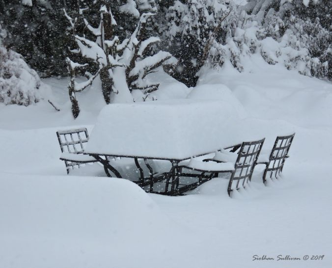 Snowy Table 24February2019