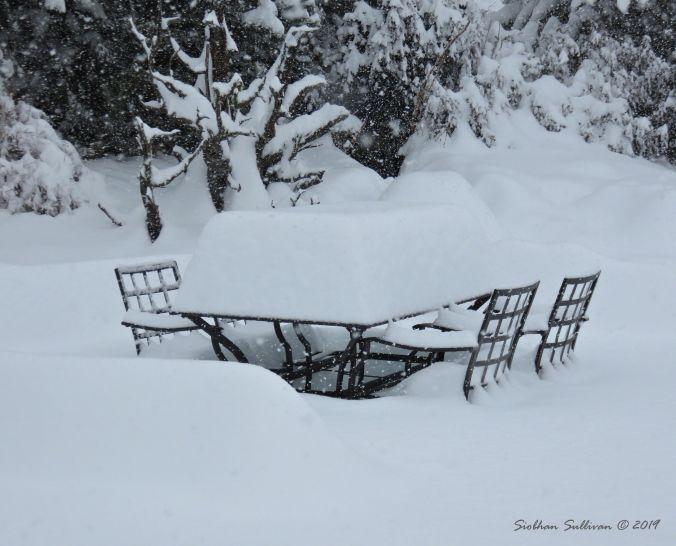 Snowy Table 24February2019
