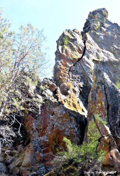 Favorite Rocks Lichens, Tumalo Creek, Oregon 9April2017