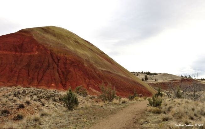 Favorite Rocks Painted Hills, Oregon 26October2019