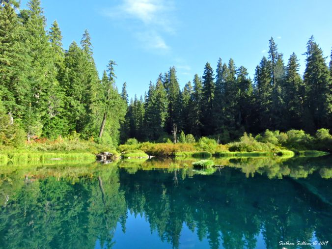 Reflections at Clear Lake, Oregon 30August2016