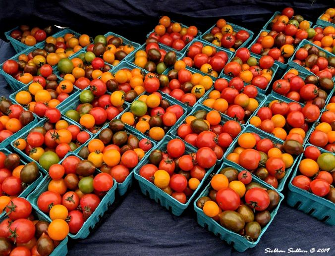 Summer's bounty, Colorful cherry tomatoes, Bend, Oregon 19 June 2019