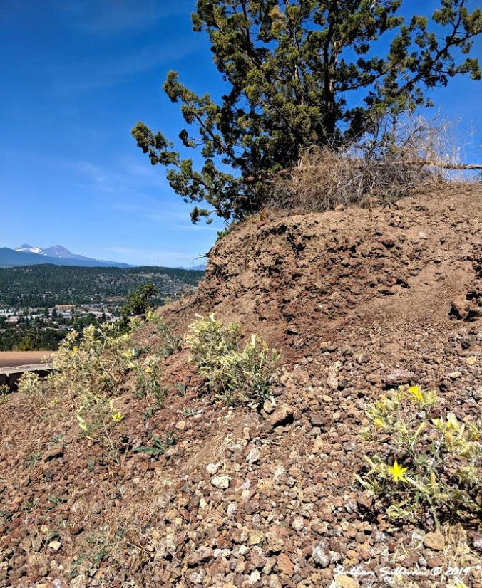 Pilot Butte view in Bend, Oregon August 2019