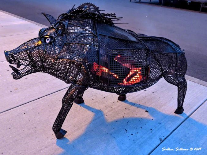 That's some pig! Fire pit, Bend, Oregon 15February2020