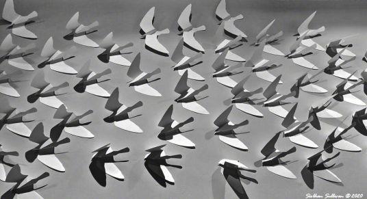 Paper bird sculpture, Bend, Oregon 23 October 2018