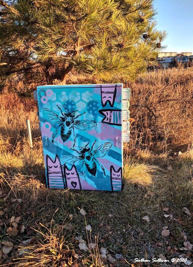 Artwork on utility box in Bend, Oregon November 2018