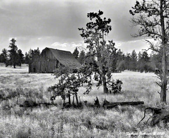 A barn full of stories, Sisters, Oregon 9 August 2019