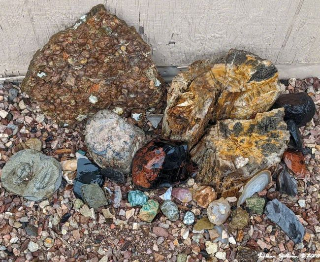 I like rocks collection of various rocks in Oregon May 2020