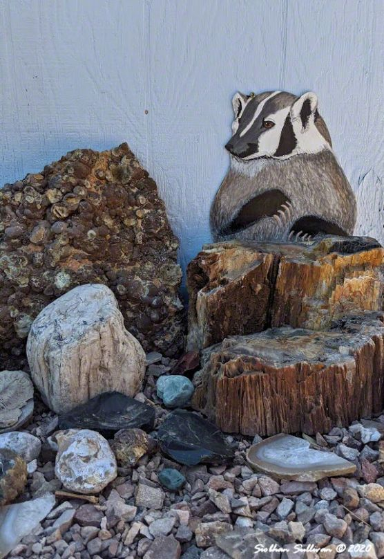 High Desert mural - American badger Siobhan Sullivan August 2020