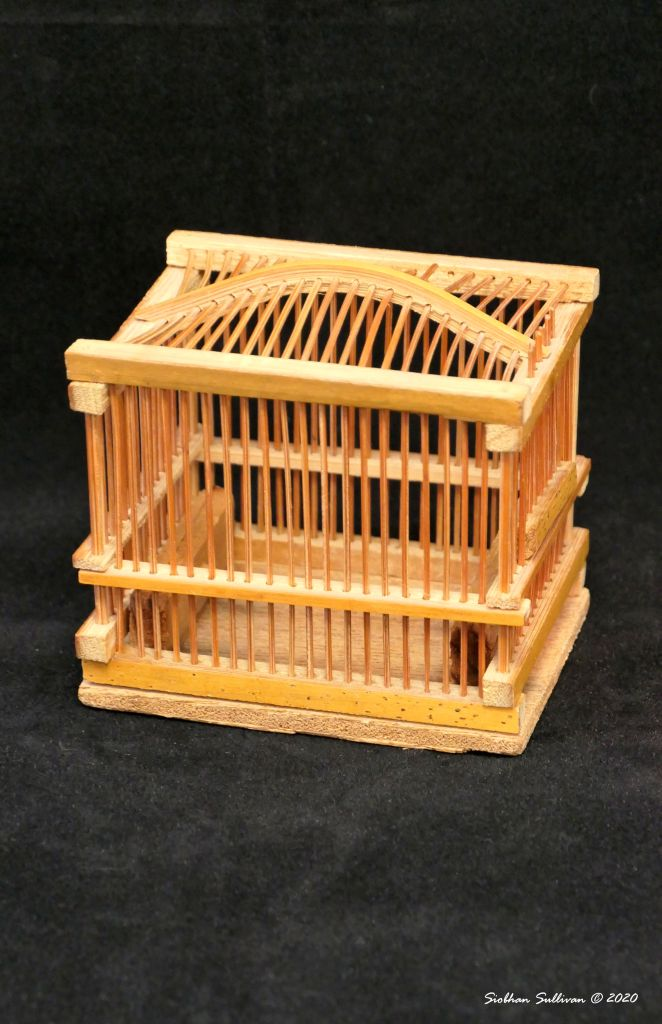 Household treasures- cricket cage August 2020