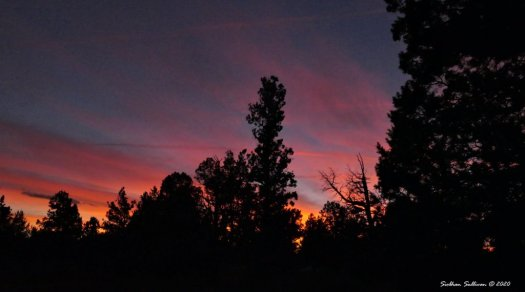 Sunset near Bend, Oregon