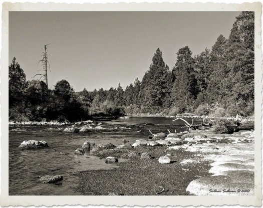 Rounded river rocks on Deschutes River
