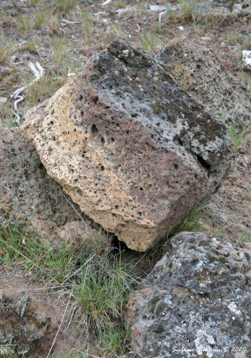Igneous rock boulder 15November2020