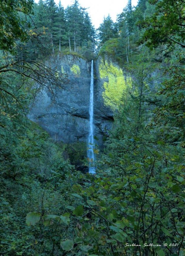 Water falling Latourell Falls