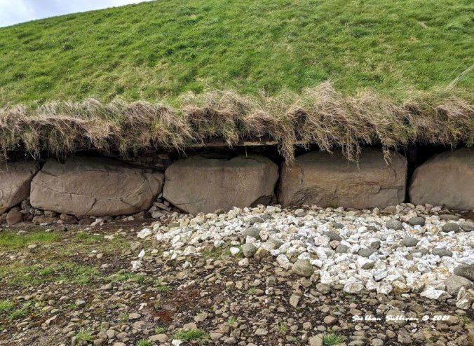Near Knowth entrance, Ireland March 2020