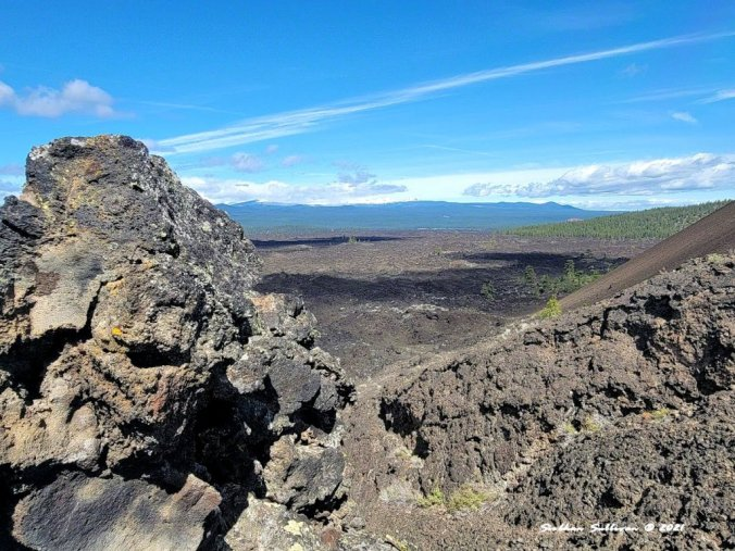 Volcanic views from Lava Lands