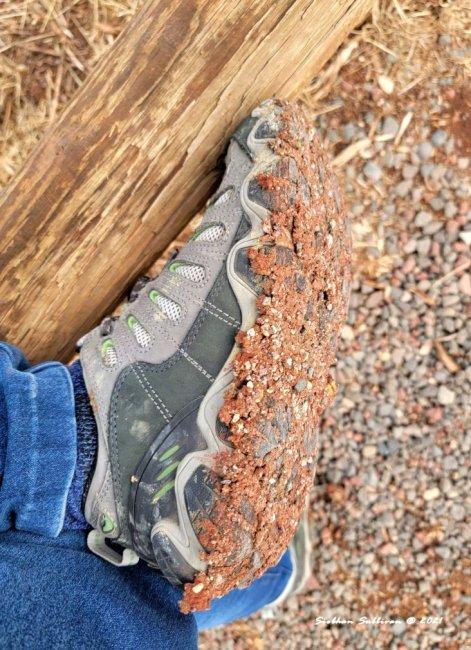 Gumbo mud