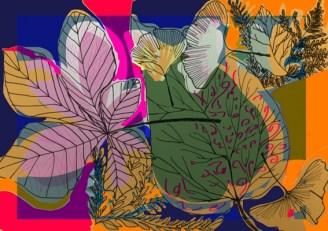 feuilles-ben-4