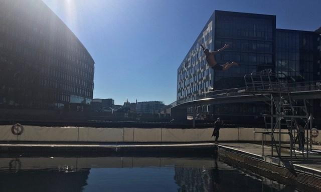 Ein Mann springt vom Sprungturm ins Hafenbecken in Kopenhagen