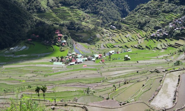 Blick in das Tal von Batad fotografiert vom Amphitheater