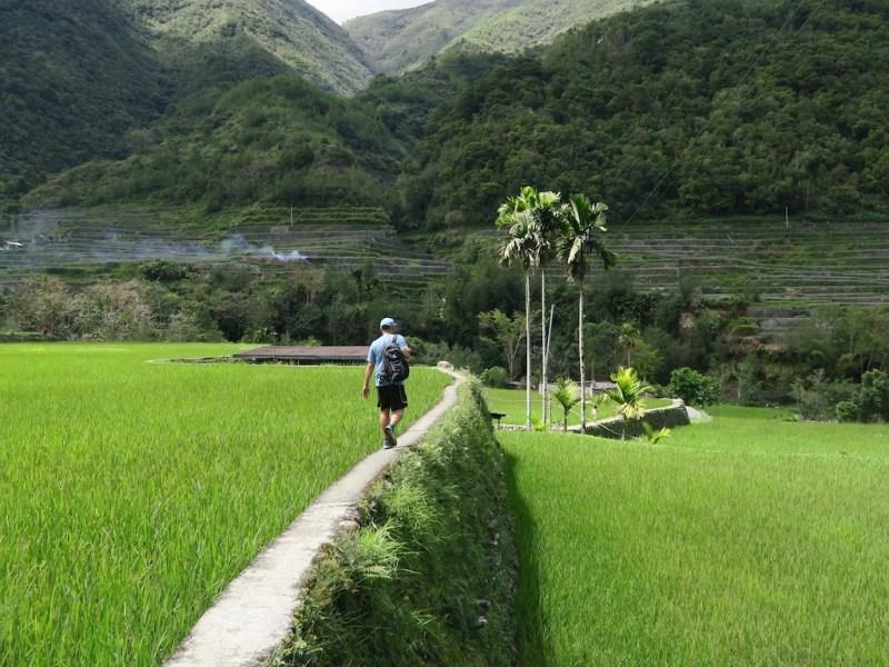Die Reisterrassen von Banaue und Hapao (Tag 7: Philippinen Tripreport)
