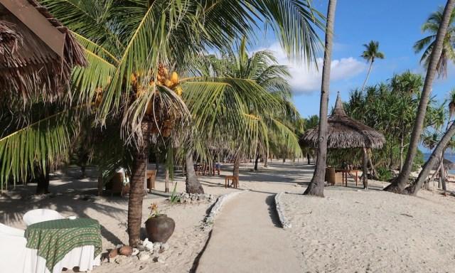 Coco Grove Beach Resort enviroment