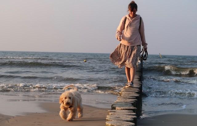 Cockapoo und Frau am Strand von Kolberg