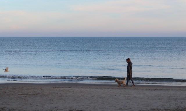 Frau mit Hund und einer fliegenden Möwe am Strand von Kolberg