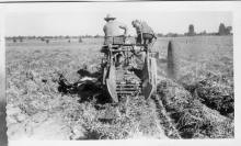 Two men on a tractor digging potatoes in Central Oregon.