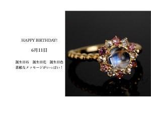 6月11日生まれのあなた。お誕生日おめでとうございます。誕生石はホワイトラブラドライト、意味と誕生花、プレゼントは?