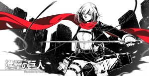 mikasa black and red