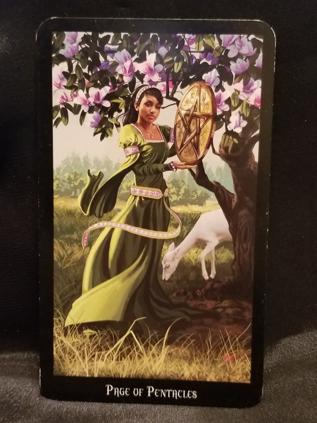 Page of Pentacles: Young girl holding large pentacle standing beneath a tulip tree