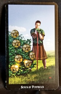 Seven of Pentacles: Man with sword standing next to a bush adorned with seven pentacles