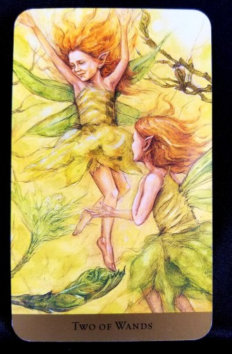 Two of Wands-Tarot: Two sprites dressed like flowers and bathed in sunshine