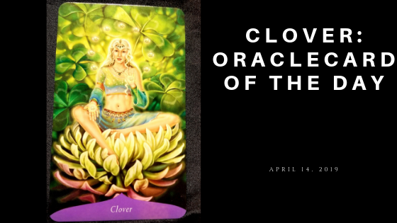Clover Oracle Card