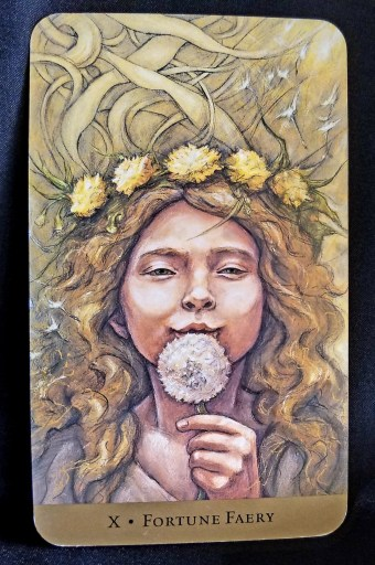Fortune Faery - A young female Faery blowing on a fluffy dandelion