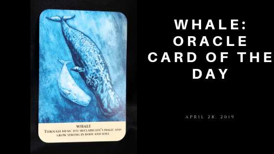Whale Animal Oracle Card