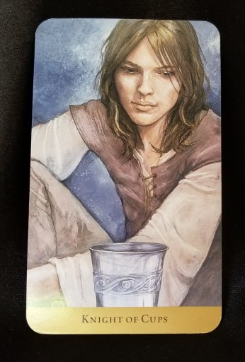 Knight of Cups - A handsome young man gazing contemplatively at a silver cup