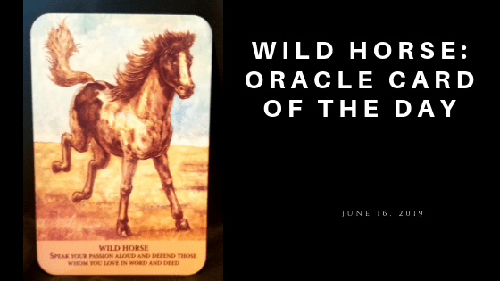 Wild Horse Oracle Card