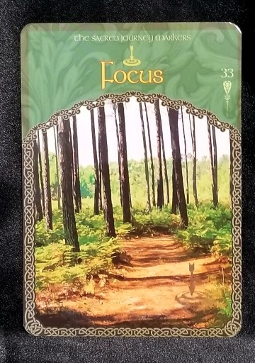 Focus- Cardshows a dirt path through a forest.  A compass is off to one side.