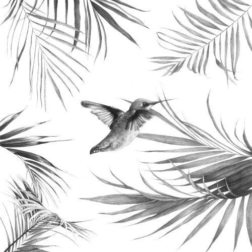 Colibri - Melanie Gregoire
