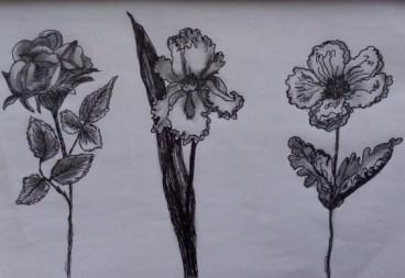 fleurs graphite Claire Archambault