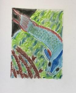 poisson-de-marc-andre