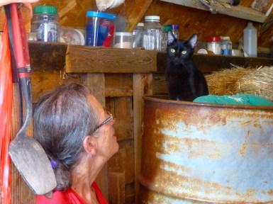 Sr. Aurelia and Holly, the monastery cat