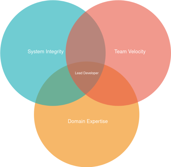 Venn Diagram: System Integrity, Team Velocity, Domain Expertise; Overlap: Lead Developer.