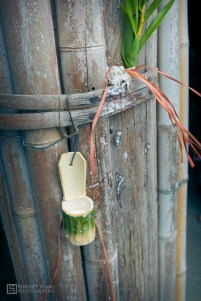 Mayasvi, Maotana will offer Tsou millet wine to these bamboo containers outside family homes to bless them.