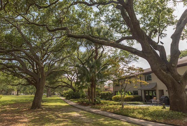 New Orleans homes for sale, Lake Vista homes for sale, New Orleans real estate, New Orleans real estate agent